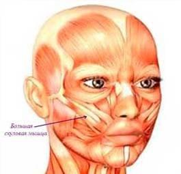Операция ямочки на щеках